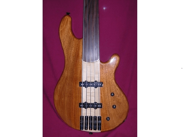 Fretless Five String Bass